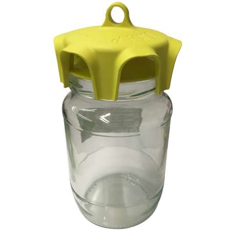 Vaso Trap Wasp Trap Pack of 2